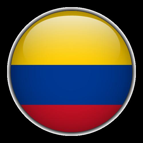 MS-flag